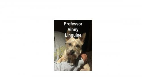 Vinnie 2